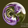 Purple Swirl Orb by Darleen Stry