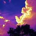 Purple Thunder by Deborah Fay