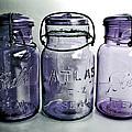 Purple Trio by Angie Mahoney