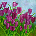 Purple Tulips by Huy Lee