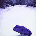 Purple Umbrella by Amanda Elwell
