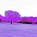 Purple World by Katie Beougher