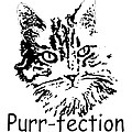 Purr-fection by Robyn Stacey