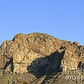 Pusch Ridge With Saguaro by Rincon Road Photography By Ben Petersen