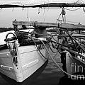 Push Boat by Skip Willits