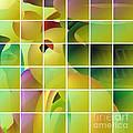 Puzzle Solved by Gaspar Avila