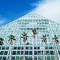 Pyramid, Moody Gardens, Galveston by Panoramic Images
