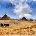 Pyramids Of Giza In Egypt by Sophie McAulay