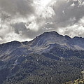 Pyrenees Mountains by Linda C Johnson