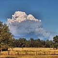 Pyrocumulus Cloud 08 18 12 by Joyce Dickens