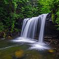 Quadrule Falls Summer by Anthony Heflin