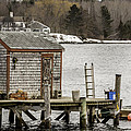 Quaint Fishing Shack New Hampshire by Laura Duhaime
