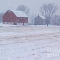 Quakertown Farm On Snowy Day by Anna Lisa Yoder