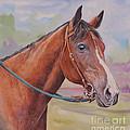 Quarter Horse by Gail Dolphin