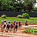 Quarter Turn 1 012md2 by Earl Johnson