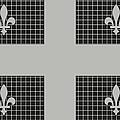 Quebec Metal Mesh Flag by David G Paul