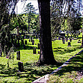 Quechee Vermont Cemetary by Sherman Perry