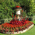 Queen Mary's Gardens Regents Park by Nicky Jameson