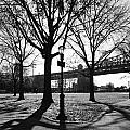 Queens Bridge Park  by Kenneth Ortiz