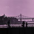 Queensboro Bridge 1 - Manhattan - New York by Madeline Ellis