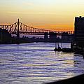 Queensboro Bridge At Night - Manhattan by Madeline Ellis