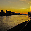 Queensboro Bridge At Sunset - Nyc by Madeline Ellis