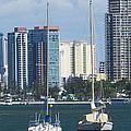 Queensland Australia by Joyce Woodhouse