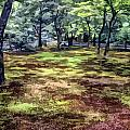 Quiet Forest by Stefan H Unger