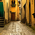Quiet Lane In Tuscany 1 by Greg Matchick