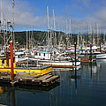 Quiet Time At The Harbor by Tom Janca