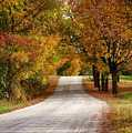 Quiet Vermont Backroad by Jeff Folger