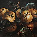 Quinces by Dusan Vukovic
