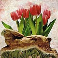 Rabbit And Pink Tulips by Janette Boyd