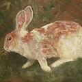 Rabbit by Birgit Schnapp