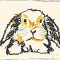 Rabbit Jon by Go Van Kampen