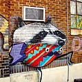 Raccoon On The Wall by Alice Gipson