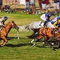Race 6 - Del Mar Horse Race by Angela Stanton