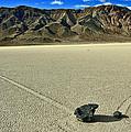 Racetrack Playa by David Salter