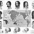 Racial Types, 19th Century by Granger