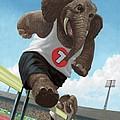 Racing Running Elephants In Athletic Stadium by Martin Davey