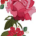 Rad Pink And Red Rose by Anne Norskog