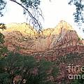 Radiant Canyon Wall by Mari  Gates