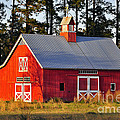 Radiant Red Barn by Al Powell Photography USA