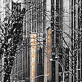 Radio City Music Hall Lights by Kimberly Perry