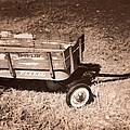 Radio Flyer Trav-ler Wagon by John Cardamone