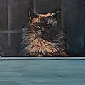 Ragdoll Cat Blue Eyes Inside by Christine Montague