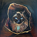 Cat Painting. Ragdoll Cat The Cat's In The Bag by Christine Montague
