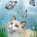 Ragdoll Kitty And Butterflies by Carol Cavalaris