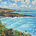 Ragged Point California by Dwain Ray