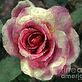 Ragged Satin Rose by RC DeWinter